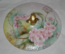 RARE Antique GDA Limoges France BISCUIT Cracker JAR Hand Painted PINK WILD ROSES