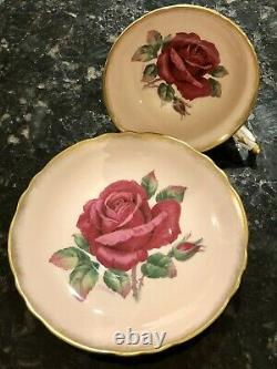 RARE PARAGON Pale Pink HAND PAINTED GIANT RED ROSE CUP SAUCER, Signed R Johnson