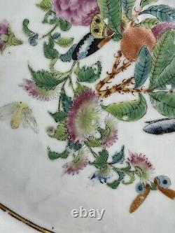 Rare 17.3 Inches Antique Chinese Famille Rose Platter 18th Century