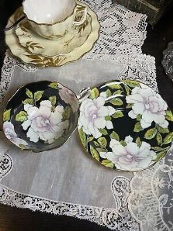 Rare Paragon Cabbage Rose Pink White Black Gardenia Cup Saucer To The Bride 5776