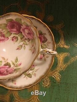 Rare Paragon Rosebud Pink Cabbage Rose Tea Cup And Saucer