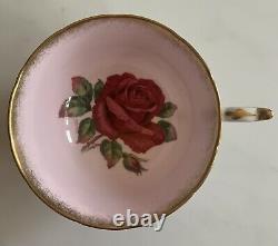 Rare Paragon Tea Cup & Saucer Pink Huge Cabbage Rose Signed R. Johnson