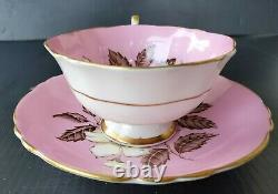 Rare! Paragon Vintage Wide Mouth Teacup & Saucer Set Pink With Wild Rose Pattern